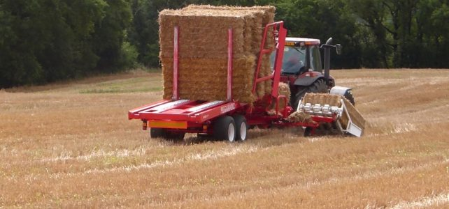 İthal saman çiftçinin umudu